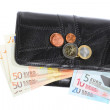 Stock Photo: Economy and finance. Purse with euro banknote isolated
