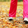 Runner legs running shoes. Woman jogging in autumn park — Photo