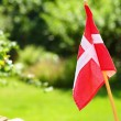 Stock Photo: Danish flag on green grassy background