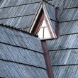 Detail of protective wooden shingle on roof — Foto de Stock