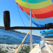 The wind has filled colorful spinnaker sail — Stock Photo