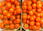 Red tomatoes in supermarket as food background. Retail. — Stock Photo