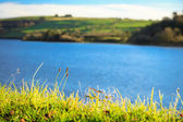 Beautiful irish landscape green meadows at the river Co.Cork, Ireland. — Stock Photo