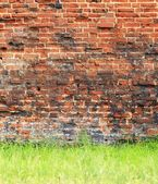 Grungy background of a brick wall texture — Stock Photo
