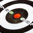 Closeup of old dirty black and white target as sport background — Stock Photo