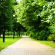 The stone path in the park. — Stock Photo