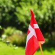 Danish flag on green grassy background — Stock Photo