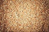 Sağlıklı bir diyet. doğal gıda arka plan olarak keten tohumu keten tohumu — Stok fotoğraf