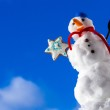 Little happy christmas snowman with cookie star outdoor. Winter season. — Stock Photo #40044225