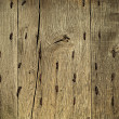 Old wooden grunge background with metal rusty nails — Stockfoto