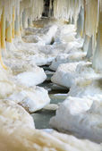 Winter scenery. Baltic Sea. Close up ice formations icicles on pier poles — Stock Photo