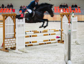 Black horse with rider jumping over obstacle. Riding competition. — Stock Photo