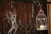 Candle light tree branches decorating a room — Stock Photo