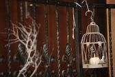Svíčka světelný strom větví, zdobení místnosti — Stock fotografie