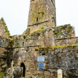 Kilcrea Friary — Stock Photo #41355893