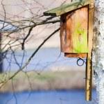Wooden nesting box bird house on the tree outdoor. Winter. — Stock Photo #41971917