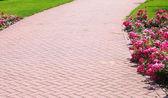Stone pathway in garden, brick sidewalk — Stock fotografie