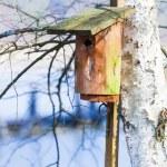 Wooden nesting box bird house on the tree outdoor. Winter. — Stock Photo #45346525