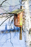 Wooden nesting box bird house on the tree outdoor. Winter. — Stock Photo