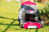 Mowing green lawn with red lawnmower — Stock Photo