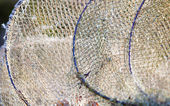 Closeup of white fishnet net outdoor — Stock Photo