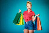 Plakát dívka s nákupní tašky nákup oblečení. — Stock fotografie