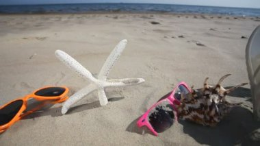 Colorful sunglasses, seashells and starfish seastar on the sandy beach. — Stock Video