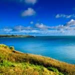 Irish landscape. coastline atlantic coast County Cork, Ireland — Stock Photo #49240515