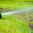 Lawn sprinkler spraying water over grass. — Stock Photo #49401969