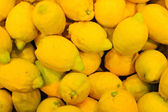 Closeup on tropical fruits lemons. — Stock Photo