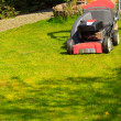 Mowing green lawn with red lawnmower — Stock Photo #49547719
