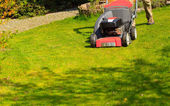 Mowing green lawn with red lawnmower — Stok fotoğraf