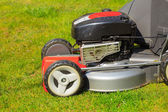 Mowing green lawn with red lawnmower — Stockfoto