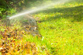 Lawn sprinkler spraying water over grass. — ストック写真