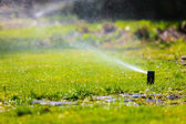 Lawn sprinkler spraying water over grass. — Стоковое фото