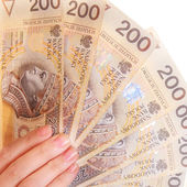 Female hand holding polish currency money banknote — Stok fotoğraf