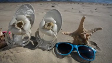 Colorful sunglasses, seashells and starfish seastar on the sandy beach — Stock Video