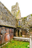 KILCREA, IRELAND - NOVEMBER 28: Kilcrea Friary on November 28, 2012 in Co.Cork, Ireland — Stock Photo
