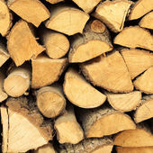 Firewood pile — Stock Photo