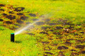 Sprinkler spraying water over grass — Stock Photo