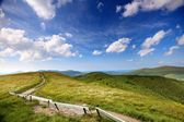 Nature. Road in the mountains. Summer landscape. — Stock Photo