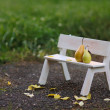 Love couple sitting on the bench — Stock Photo #18951357