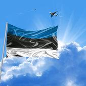 праздник флаг эстонии — Стоковое фото