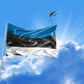 Férias de bandeira de estónia — Foto Stock