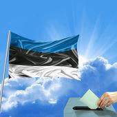 Estland flagge wahl — Stockfoto