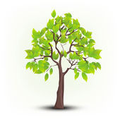 Vector tree — Stock Vector