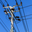 Electric Pole with Powerlines against Bright Blue Sky with Snake Protector — Stock Photo