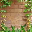 Brown Brick Wall with Yellow Flower Frame — Stock Photo