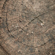 Circular Abstract Brown Background — Stock Photo