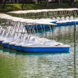 Pedal Boats locked at Peaceful Lake Marina, Recreation Equipment — Stock Photo